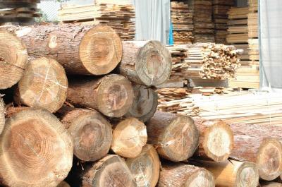 自然乾燥した天竜杉の無垢材