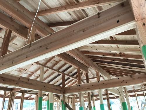 藤枝市 自然とつながる平屋 構造見学会